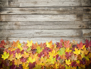 Autumn Leaves Arrangement on an Old Wood Background