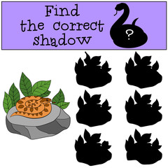 Educational game: Find the correct shadow. Little cute viper.