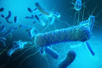 Enterobacterias Gram negativas Proteobacteria, bacteria such as salmonella, escherichia coli, yersinia pestis, klebsiella. 3D rendering. Wall mural