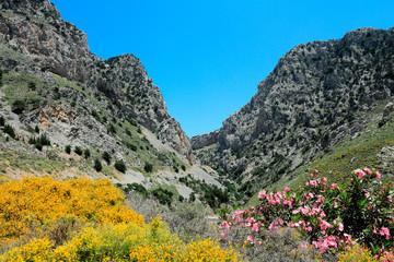 Montagne Crètoise au printemps