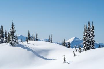Powder day with deep blue sky, Revelstoke BC, Canada