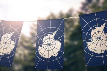 Antarctica Treaty flag pennants