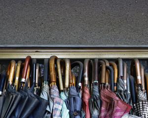 A row of closed umbrellas.