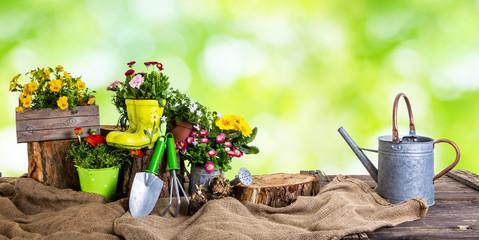 Gartenzeit Pflanzzeit