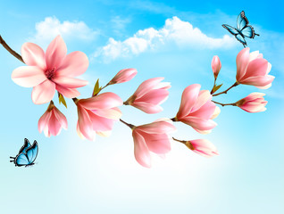 Nature spring background with beautiful magnolia branches and blue sky. Vector.