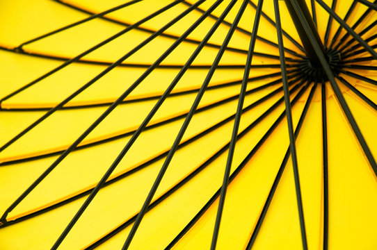 yellow umbrella on the inside, background, color.