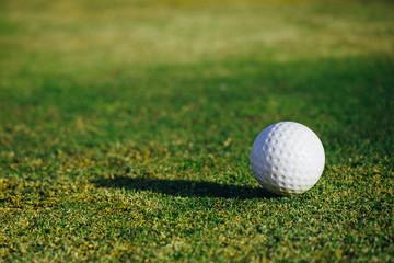 golf ball on green grass, closeup view