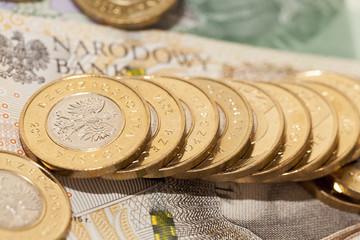 Polish money close-up