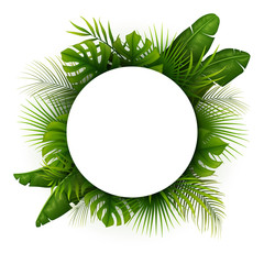Tropical green leaves with white round frame place for text isolated on white background