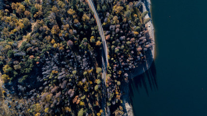 Carretera entre arboles vista aerea