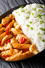 Thai chicken pangang curry with rice and green onion close-up. vertical