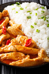 Thai food: Panang curry with rice close-up. vertical