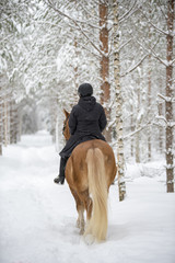 Woman horseback riding in winter in forest