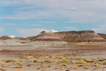 Painted desert Arizona.