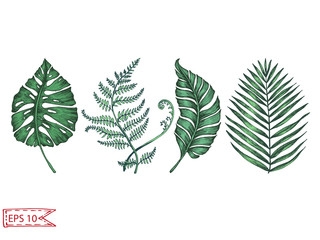 Card with palm leaves. Vector illustration for fabric print.