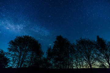 The Milky Way rises over the trees on a foreground