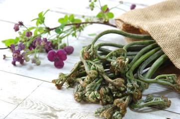 麻袋に入った蕨 山菜