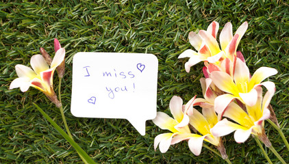 .Note in shape of a chat bubble, with words I miss you! and flowers on green grass..
