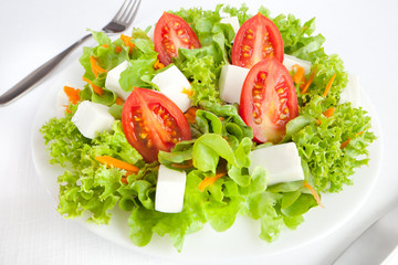 Close up of a green healthy salad against a white background