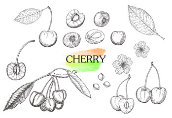Hand drawn cherry set isolated on white background.