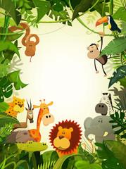 Wildlife Animals Wallpaper