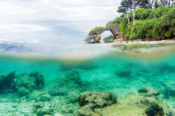 Split view over and under sea surface with lush tropical shore above waterline