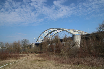 bridge (van Brienenoordbrug) on the forest on the island of Brienenoord in Rotterdam