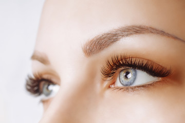 Eyelash Extension Procedure. Woman Eye with Long Eyelashes. Close up, selective focus. Fototapete