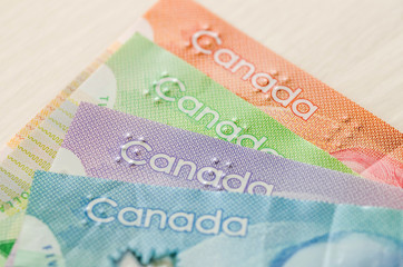 Colourful canadian dollar banknotes on wooden background