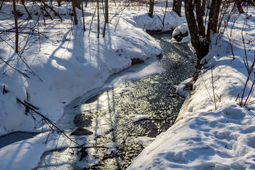 Spring forest stream in March afternoon