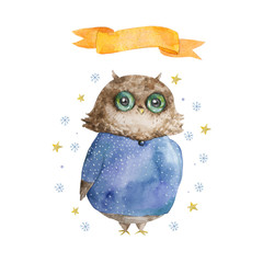 Watercolor owl Winter Owl Aquarelle Bird