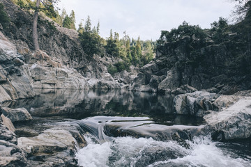 Scenic view of water flowing in Yuba River in forest