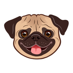 Pug dog cartoon illustration. Cute friendly fat chubby fawn pug puppy face, smiling with tongue out. Pets, dog lovers, animal themed design element isolated on white.