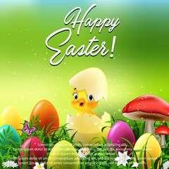 Cute Easter duckling in the broken Easter egg