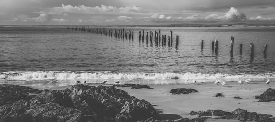Beautiful beach at Bridport, Tasmania, Australia.