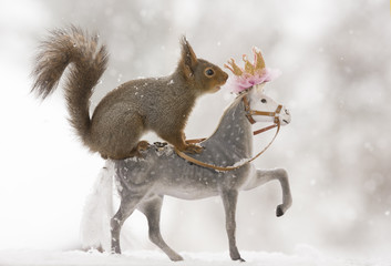 Red squirrels standing on an royal horse