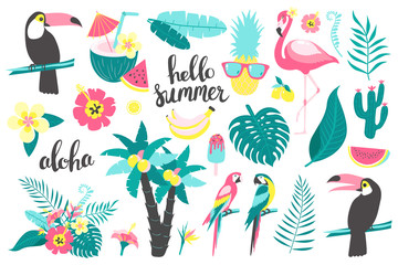 Summer set of design elements tropical leaves, flowers, fruits, flamingos, toucan, parrot. Vector illustration Wall mural