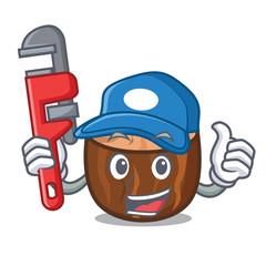 Plumber nutmeg mascot cartoon style