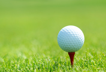 White golf ball on tee in grass