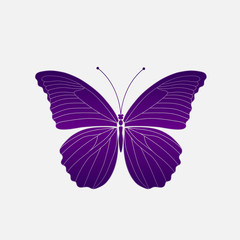 Vector. Abstract polygonal butterfly