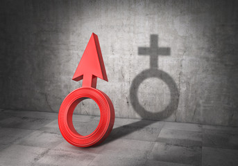 Transgender concept. Sex change. Latent life. Men badge cast shadow in form of woman badge. 3d illustration
