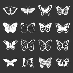 Butterfly icons set grey vector
