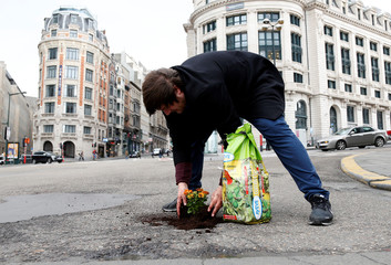 Brussels resident Anton Schuurmans plants flowers in an unrepaired pothole to draw attention to the bad state of public roads in Brussels