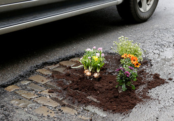 Flowers are pictured in a pothole after Brussels resident Anton Schuurmans planted them to draw attention to the bad state of public roads in Brussels