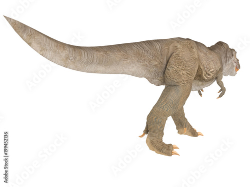 Tyrannosaurus Rex or T-rex from different point of view like top front or side isolated on a white background 3d rendering