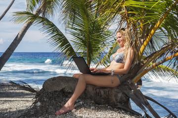 woman in bikini sitting with laptop on a palm tree