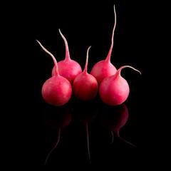 red radish on a glossy black background