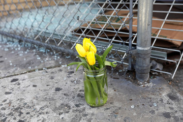 Flowers are seen at the scene where New York police officers shot to death an unarmed black man who pointed a metal pipe at them, in the Crown Heights section of Brooklyn