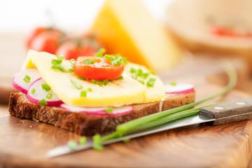 Vollkormbrot mit Käse, Tomaten und Radieschen
