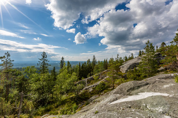 Beautiful landscape with forest and rock  in Koli National Park, Finland